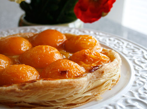 Fresh apricot tart italian food forever this forumfinder Image collections