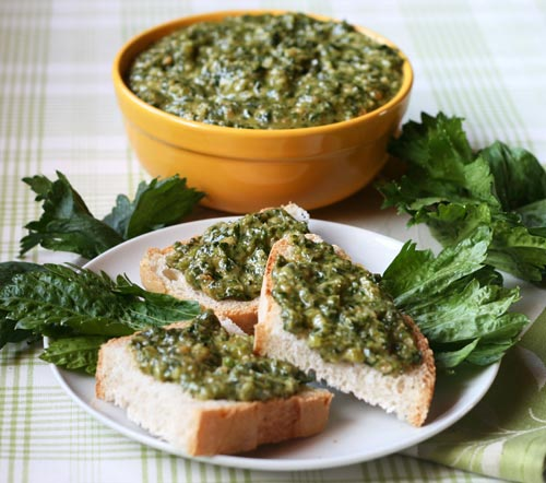 This pesto is delicious spread onto toasted bruschetta, used as a pasta sauce, or you can also simply spoon a large dollop of it onto a hearty vegetable soup.