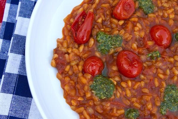 tomatofarrotto2