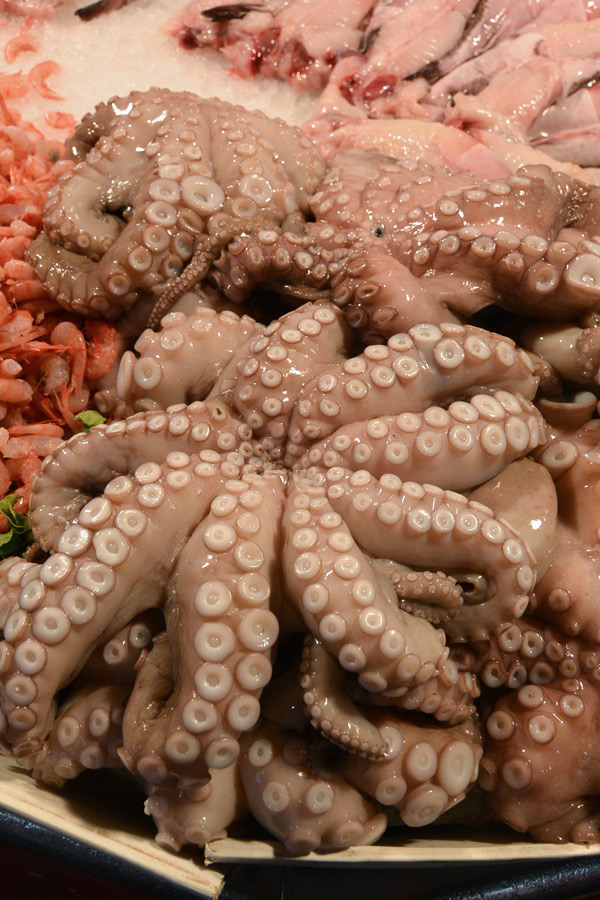 octopusmarket
