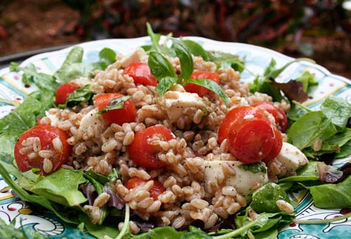 Farro, an ancient grain is a great base for soups or salads such as this one.