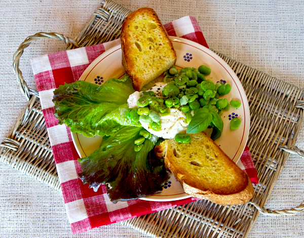 Marinated, blanched fresh fava beans paired with burrata creates a light lunch or appetizer.